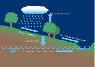 Ciclo natural agua. Sifonika